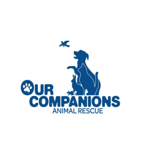 our companions logo in blue