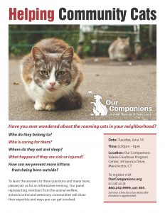 Helping Community Cats_June18
