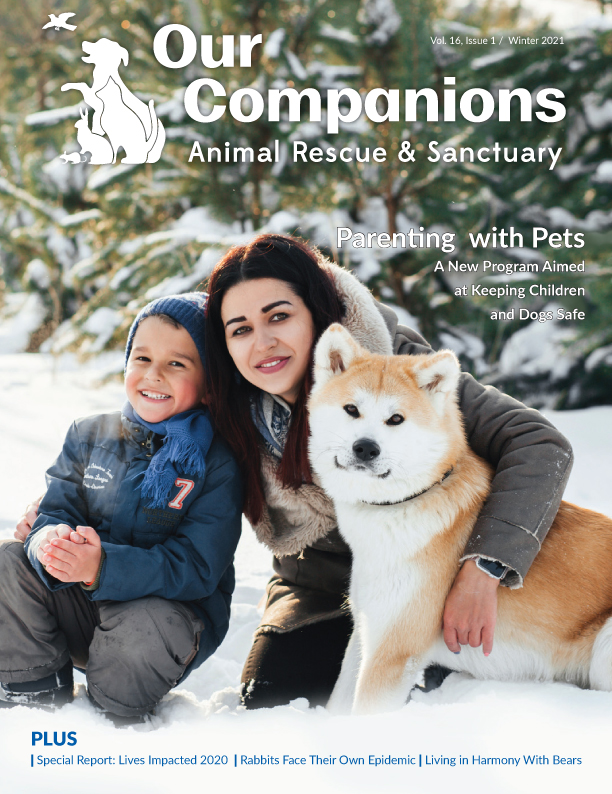 Winter_2021_Our_Companions_COVER