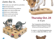 Pet Enrichment_Oct24- resize